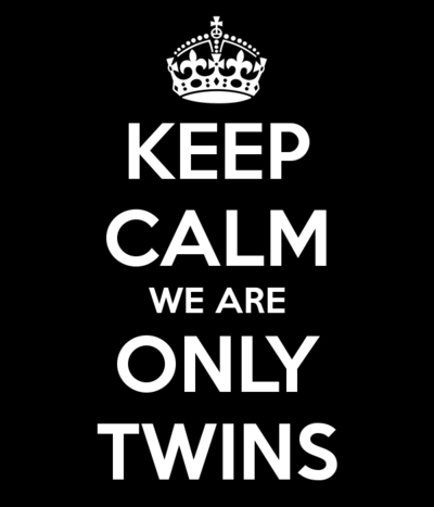 keep-calm-we-are-only-twins-2