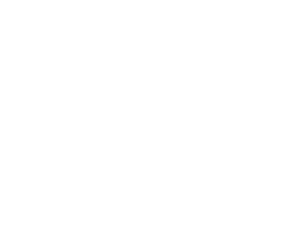 Peony Bouquet 5 16x16inches PNG