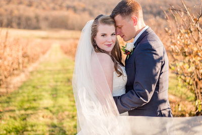 bride and groom at  breaux vineyard wedding by purcellville virginia photographer