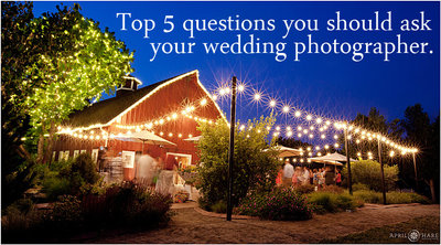Top Five Questions to Ask Wedding Photographers Before You Hire Them