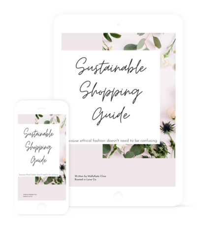 Sustainable Guide Mockup
