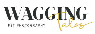 Wagging Tales Pet Photography Logo