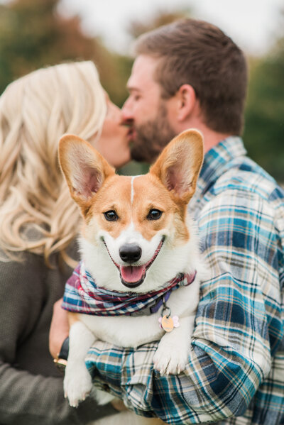 Forest Park engagement with corgie