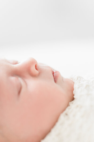 Studio Newborn Photographer in VA