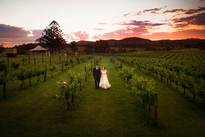 Albert-River-Wines-Tamborine-Wedding-43