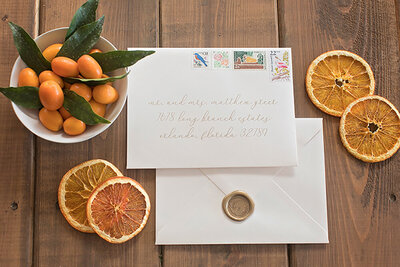 Florida outdoor french blue wedding invitations deckled edge wax seal vinatage stamps liner 18