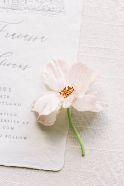 The Oaks wedding photographed by Tracy Parrett Photography