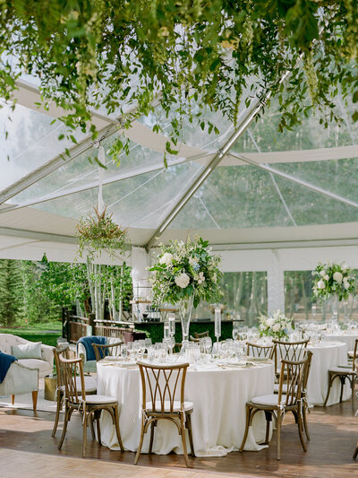Empty wedding reception under clear-roofed tent, white table cloths and gold chairs, green foliage hangs from above