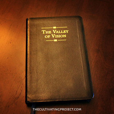 Valley of Vision Cover v2tcp