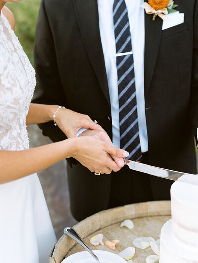 bride and groom cutting into cake