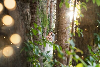 Bride and groom in forest of trees at Oak Hills