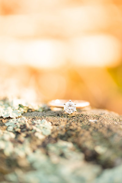 engagement ring on rock with moss in glowing sun