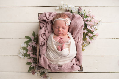 Newborn Photographer Rachel Mummert