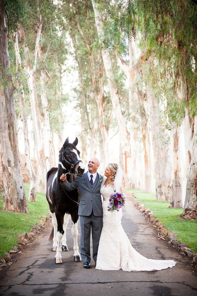 Bride-and-goor-pose-with-horse-at-Bandy-Canyon-Ranch