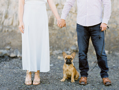 Engaged Couple stand side by side holding hands with dog sitting between their feet