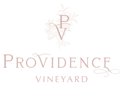 Providence Vineyard Logo