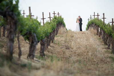 Bride and Groom in vines at Wilson Creek Winery