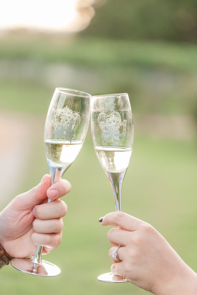 Engagement portrait of two people sharing a champagne toast.