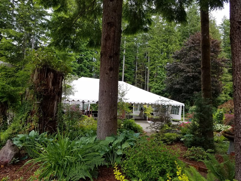 wooded tent