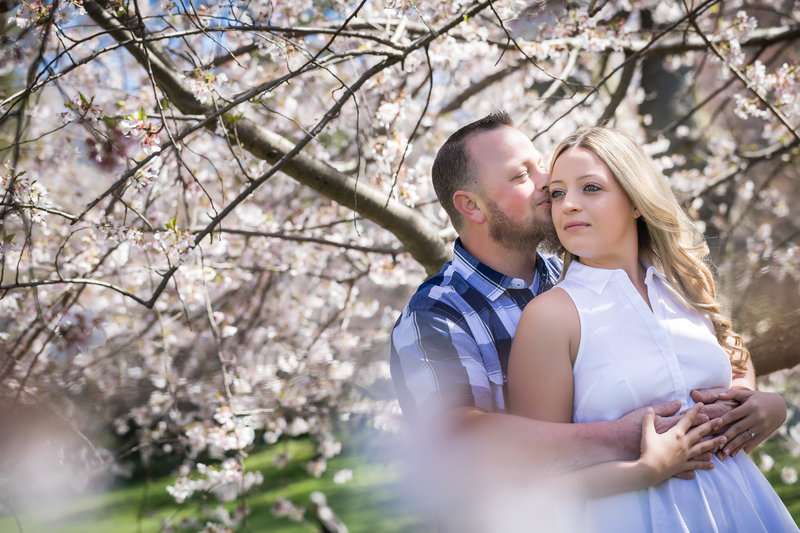 Couple hugging by cherry tree during spring engagement session at swarthmore college