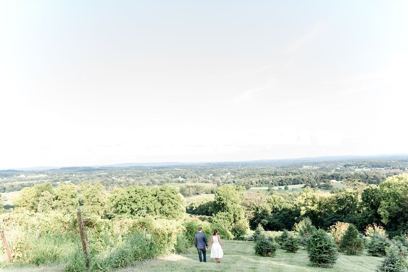 northern-va-engagement-photographer_0045