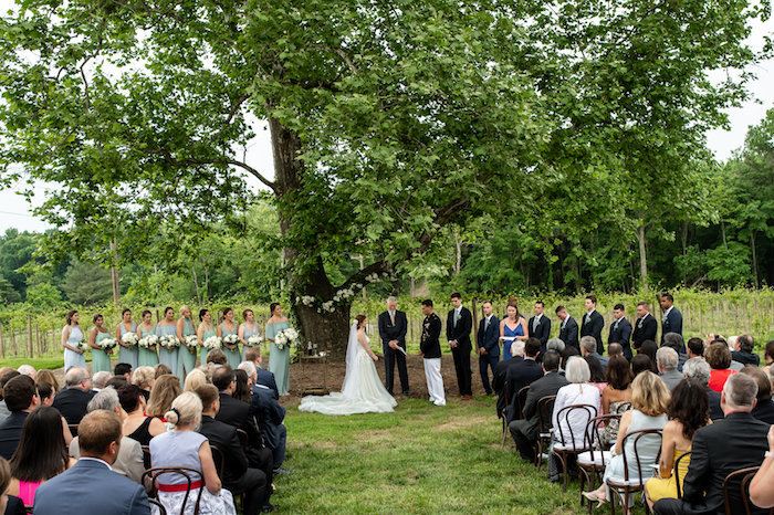 fleetwood-farm-winery-wedding-leesburg00018