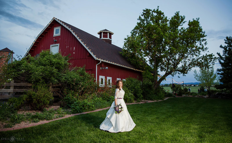 Bride portrait at dusk next to red barn at Chatfield Farms Denver Botanic Gardens