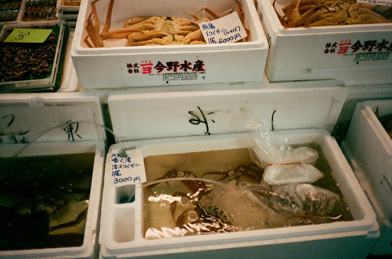tsukiji-fish-market-japan006