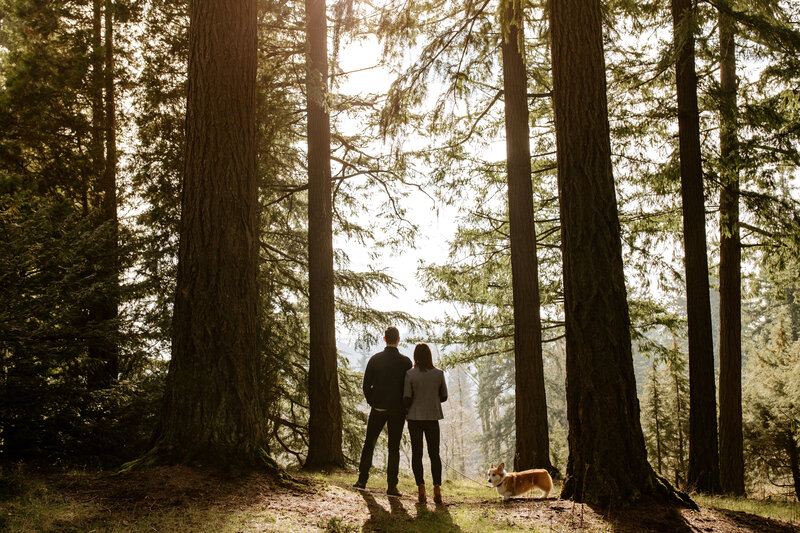 erin-david-hoyt-aboretum-timbers-engagement-76