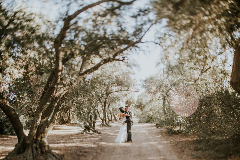 Palm Springs Olive Grove Wedding Photo