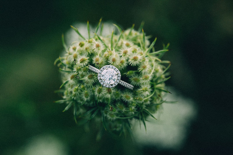 creative-engagement-ring-shot