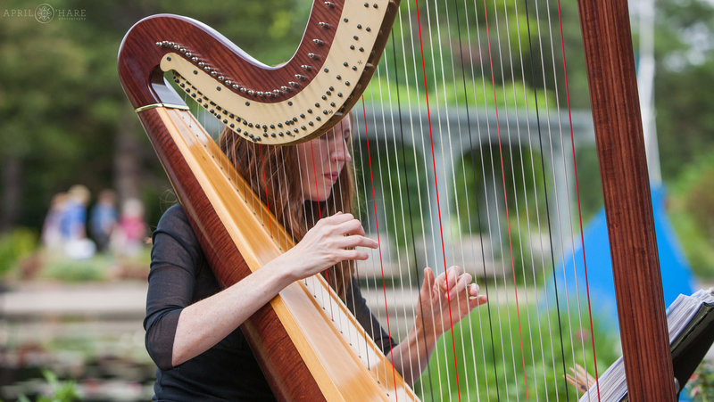 Denver-Colorado-Wedding-Harpist-Mary-Keener