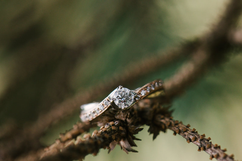 Purple and Green Rose Gold Halo Ring Des Moine Wedding Photographer