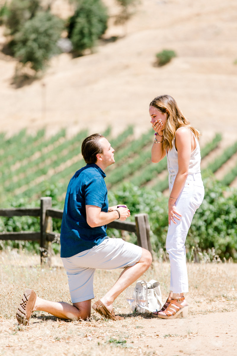 proposal at Hanna Winery in Healdsburg California