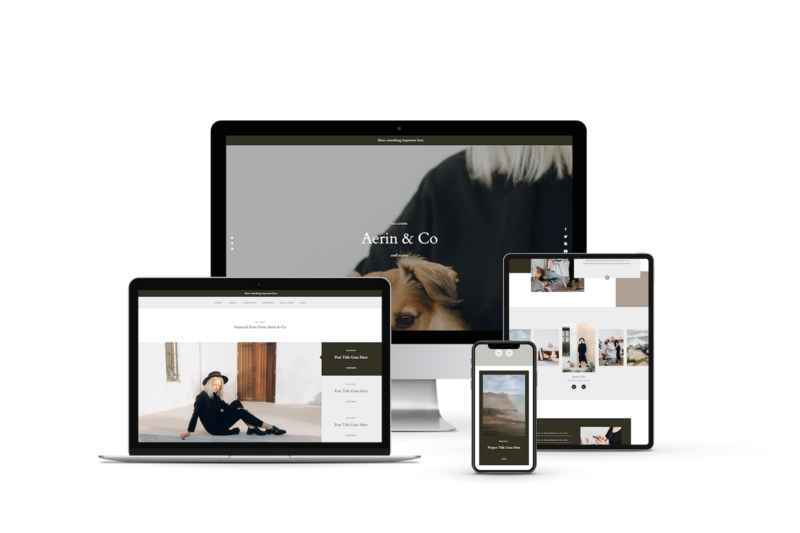 aerin-showit-website-template-sales-page