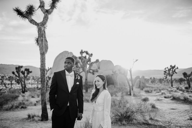Jamal and Sarah-Joshua Tree Elopement-Janae Marie Photography152