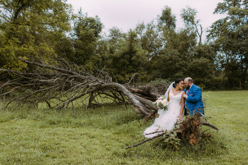 a couple sitting on dead tree at wedding ceremony