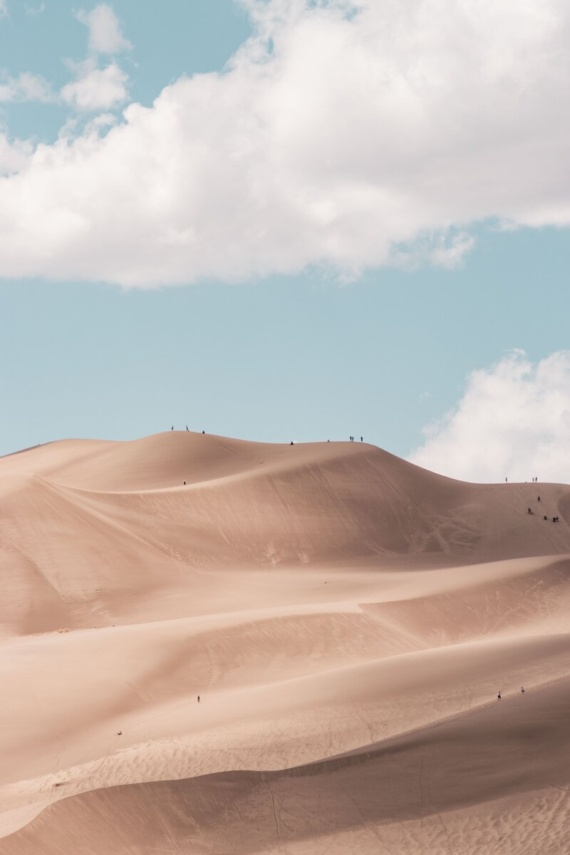 SRH Design Co - Brand designer and strategist - desert scene