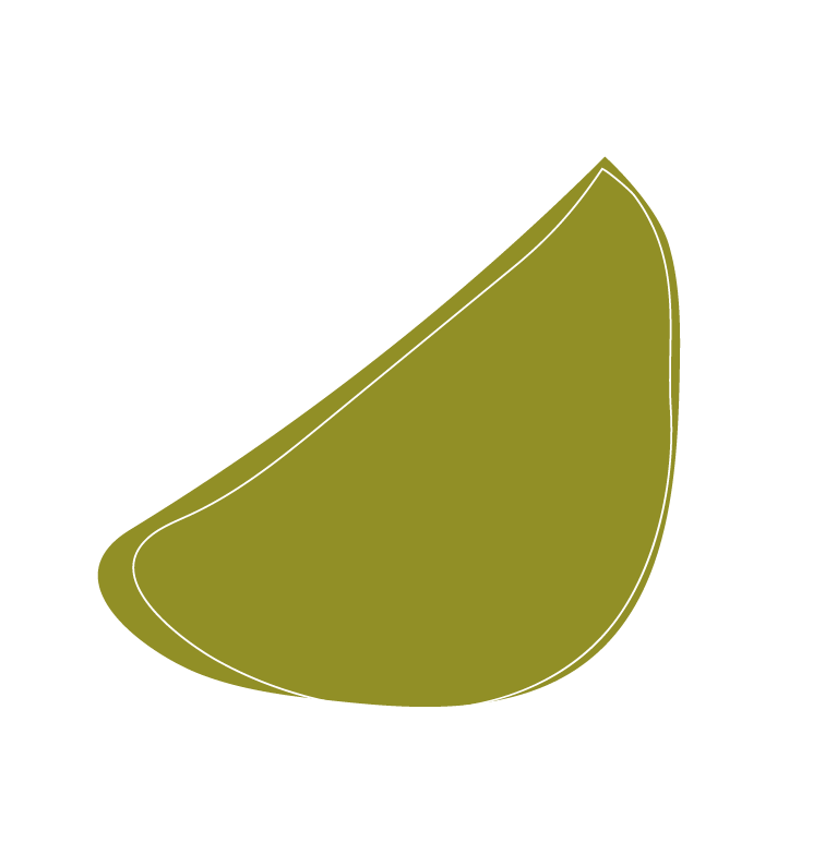 PNG_SmallShape_avocado