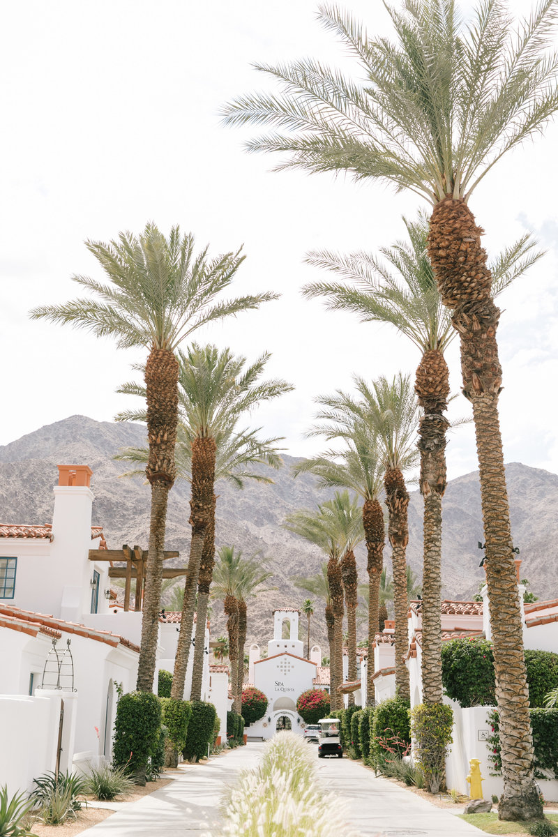 PalmSpringsPhotographer_AnnaMarks_A&S_0001