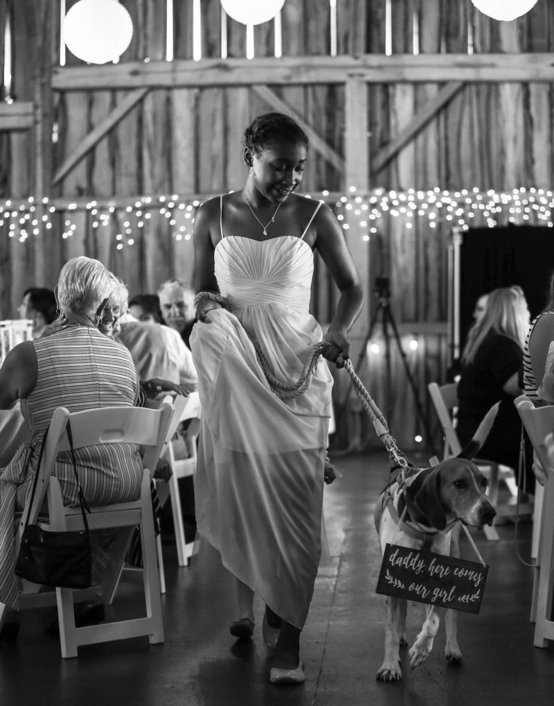 Bridesmaid escorts couple's dog down the aisle at Betsy's Barn wedding
