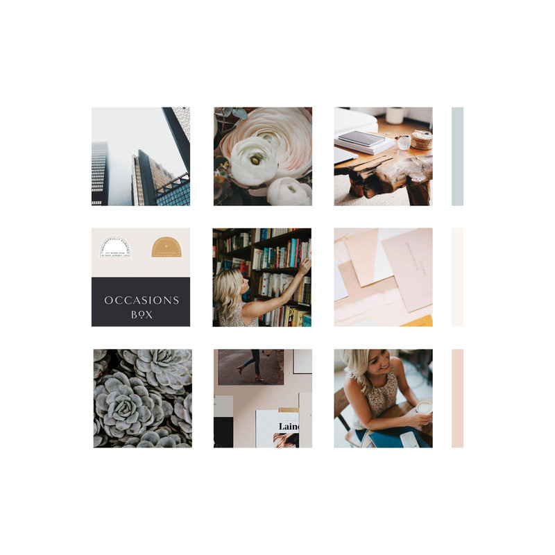 Handcrafting Heartfelt Brand & Website Designs for Female Creatives |  Showit Templates | Showit Designer | Showit Websites  | Tiffany Colvert  by Viva la Violet