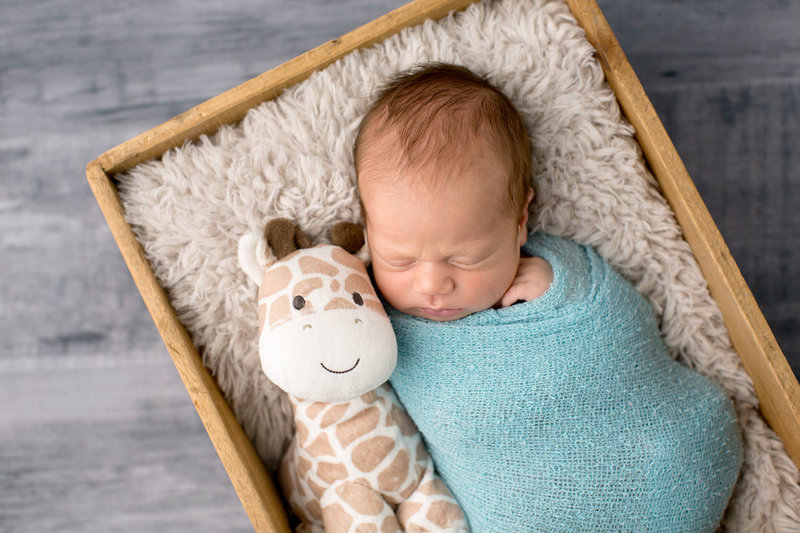 newborn baby boy with stuffed giraffe in brown box