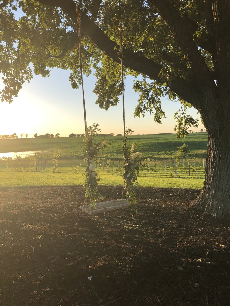 Swing hanging from large oak tree adorned with flowers for wedding ceremony at Providence Vineyard