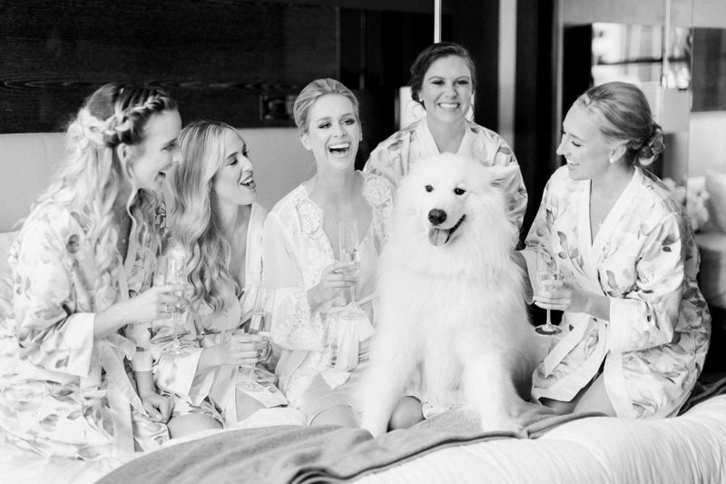 black and white image of bride and bridesmaids toasting and laughing with white fluffy dog on bed