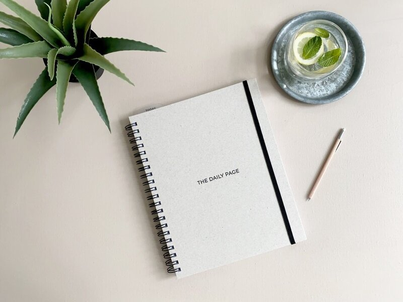 Planner on Peach with plant and lemon water 950