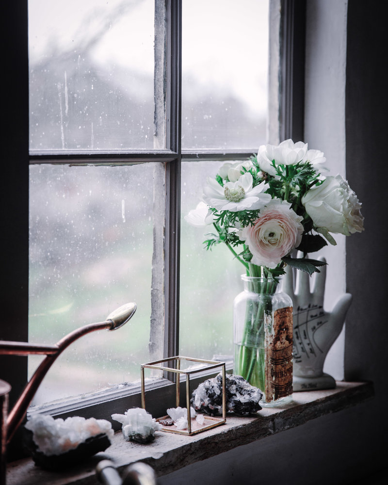 window sill kitchen flower