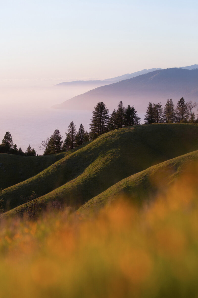 Big Sur rolling hills during sunset.