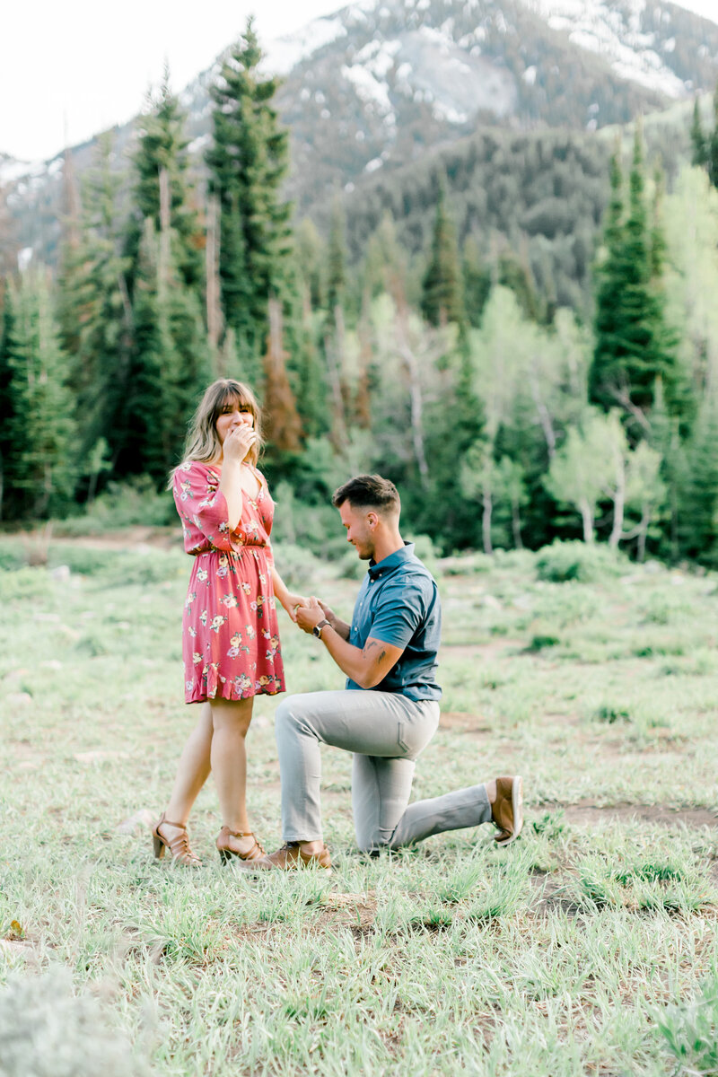Dallin and Valerie Proposal-5062