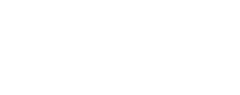 NASSIMBENI WHITE TEXT ONLY LOGO